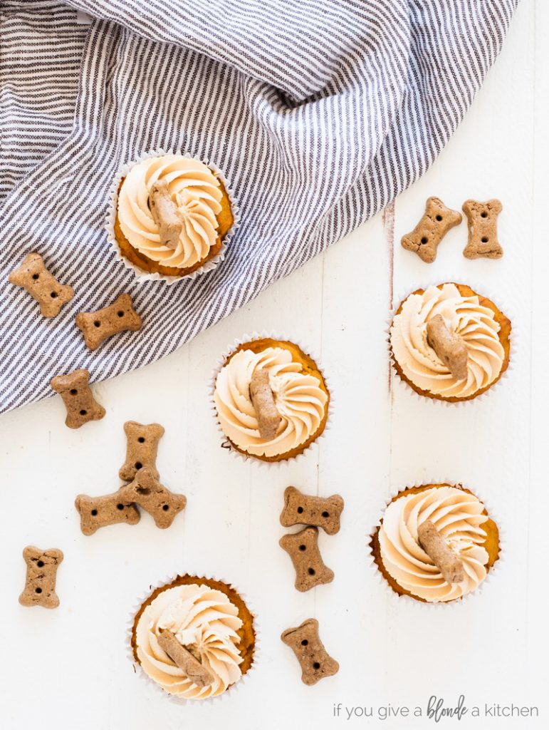 Pumpkin Peanut Butter Pupcakes Dog Cupcakes with striped dish cloth and dog biscuits